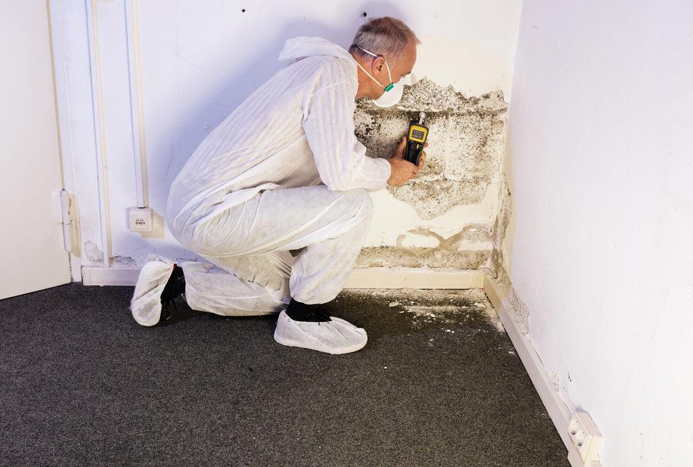 Comment traiter l'humidité ou les remontées d'humidité de votre construction ?